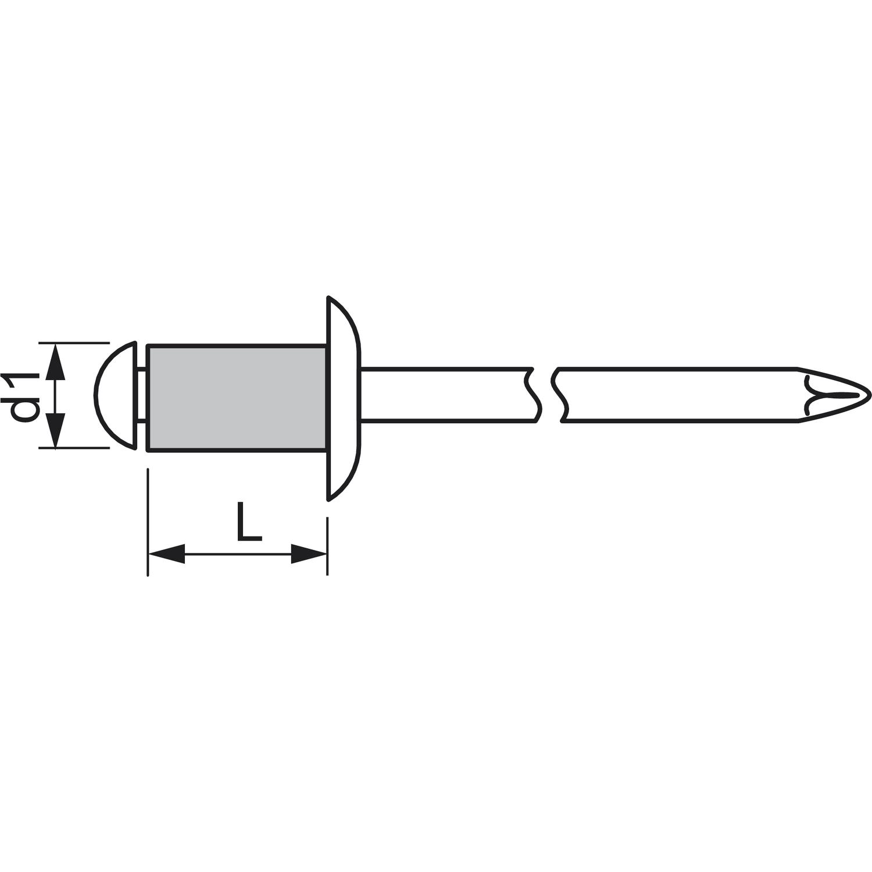 ISO15983 Blindniete Flachrundkopf 5.0x10 Edelstahl mit Edelstahldorn
